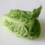 Salat – gesund oder nicht? | Teil II